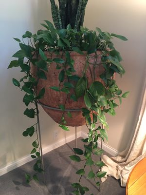 Large raised planter / tall for Sale in Columbus, OH