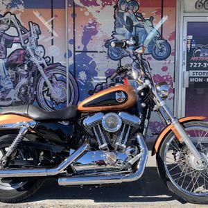2008 Harley-Davidson Sportster 1200 Custom!! 105th Anniversary for Sale in Seminole, FL