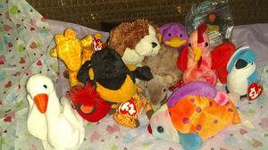 12 ty Bennie babys for Sale in Lincoln, NE