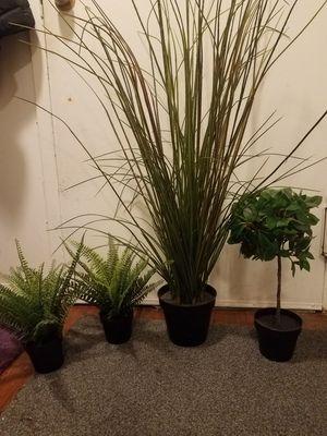 4 Ikea Fake Plants - Fejka plants for Sale in Jersey City, NJ