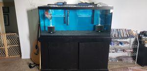 75 gallon tank for Sale in Largo, FL