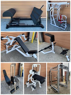 Smith Machine, Leg Extension, Bicep Curl Chest Press, Squat /Power Rack, Olympic Weight Bench, Dumbbell for Sale in Tampa, FL