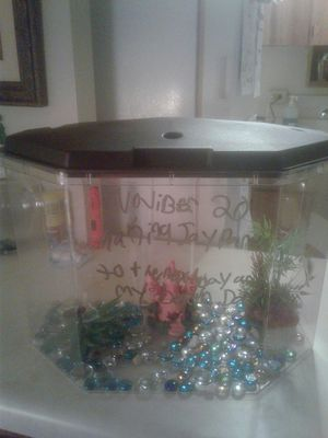 Fish tank and accessories for Sale in Knoxville, TN