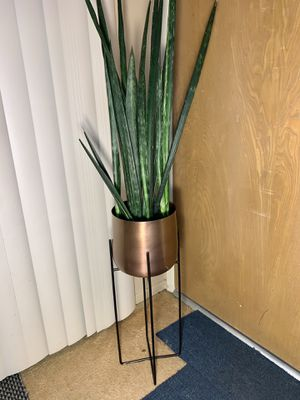 2.5 Foot Tall Snake Plant in 2 Foot Tall Bronze Pot with Black Metal Stand for Sale in Los Angeles, CA
