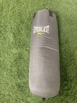 Everlast Punching Bag for Sale in Hillsboro, OR