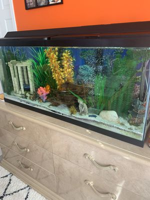 Fish tank with all decorations for Sale in Wallington, NJ