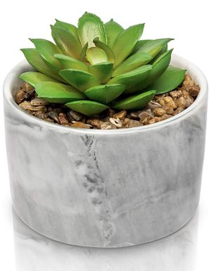 Porcelain Glossy Marble Vase + The Fake Potted Plants Stunningly Realistic Vibe┃Pre-Filled Fake Succulent Plants in Pot┃Fake Desk Plant for Sale in Virginia Beach, VA