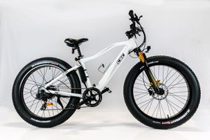 CSC Electric Bicycles, 750 W, Fat Tire Ebikes for Sale in Irwindale, CA