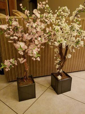 2 Flowers in planter for Sale in Boca Raton, FL