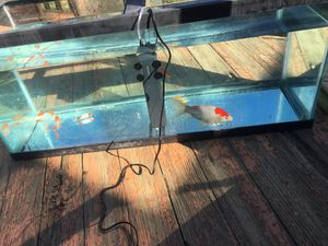 75 gallon fish tank for Sale in Fort Washington, MD