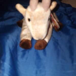 Ty Beanie Baby Goatee for Sale in Buford, GA