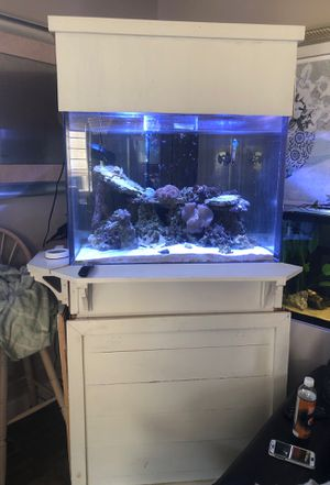 Saltwater fish tank for Sale in Prineville, OR