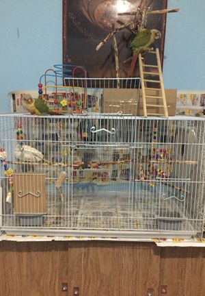 Bird Cage (BIRDS ARE NOT INCLUDED) for Sale in Dearborn, MI