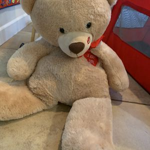 Bear for Sale in San Diego, CA
