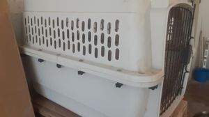 Medium dog Kennel for Sale in Raleigh, NC