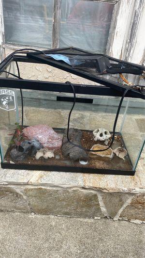 Reptile or fish tank for Sale in San Bruno, CA