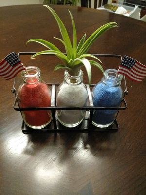MEMORIAL DAY LIVE AIR PLANT ARRANGEMENT for Sale in Bloomington, IL