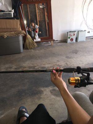 Fishing rod roddy hunter stick ! for Sale in Fresno, CA