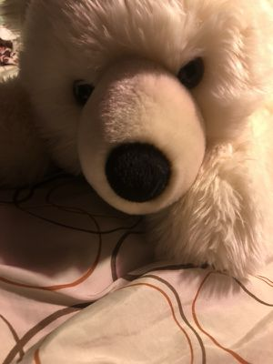 SeaWorld stuffed Polar Bear for Sale in Bonita, CA