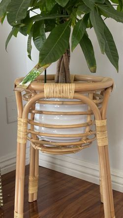 Plant Stand for Sale in Alhambra,  CA