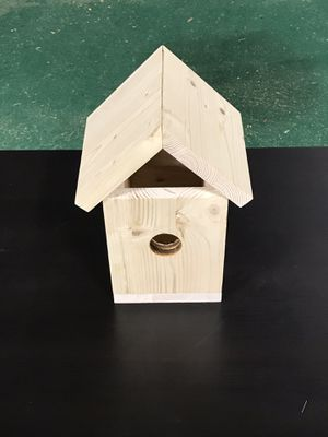 DIY Birdhouse kit for Sale in Dallas, TX