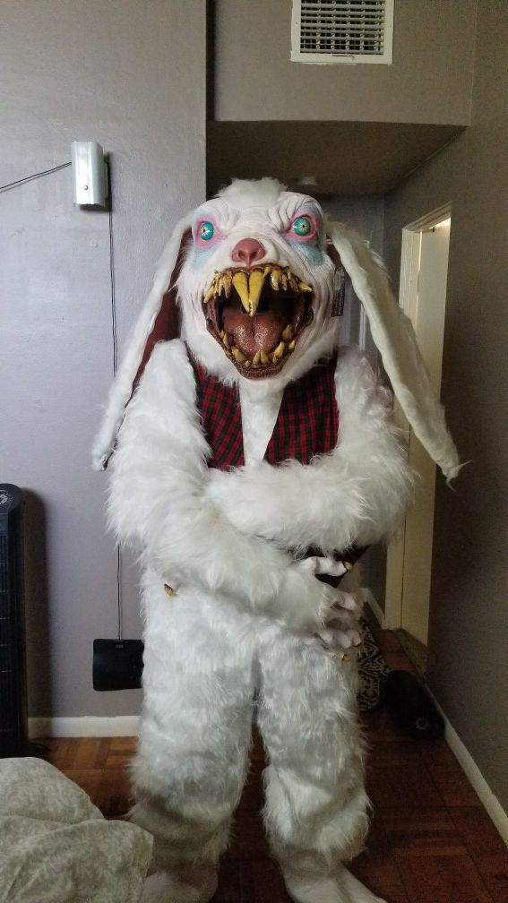 Men's Peter Rottentail Costume for Sale in Sacramento, CA