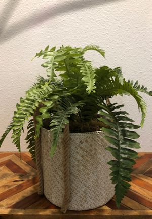 Artificial plant for Sale in Los Angeles, CA