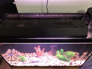 29 Gallon Aquarium (Full Kit!!) for Sale in Seagoville, TX