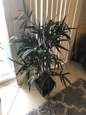 Simple in house fake plant for Sale in Fort Lauderdale, FL