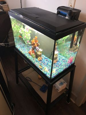 Fish tank and steel stand for Sale in Detroit, MI