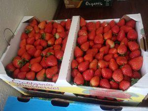 Strawberries for Sale in Montebello, CA