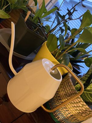 Watering can plant indoor white and gold for Sale in Canton, MI