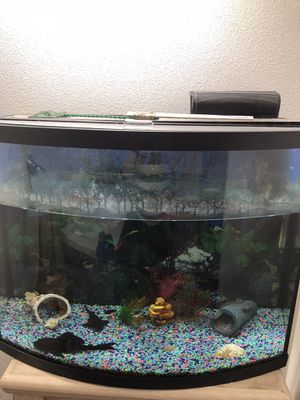 Big Fish tank for Sale in Moreno Valley, CA