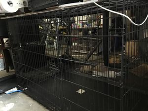 XL Dog crate obo for Sale in Lakeland, FL