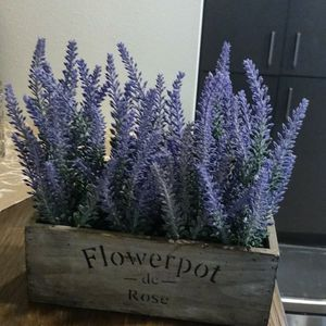 Fake Lavender Plant for Sale in Lake Forest Park, WA