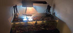 Turtle aquarium 20 gallon's tank for Sale in Garden Grove, CA