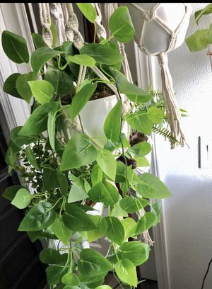 Ivy Houseplant in Macrame Hanger Fake Plants PRICE FIRM for Sale in West Covina, CA