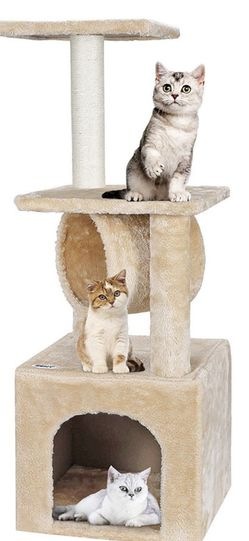 36'' Cat Trees for Kittens Cat Furniture Towers with Scratching Posts, Double Perches for Sale in Garden Grove,  CA