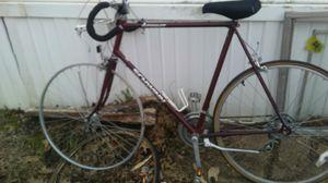 Schwin 10 speed for Sale in Villa Ridge, MO