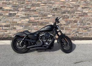 2013 Harley-Davidson Iron 883 + Upgrades for Sale in Tampa, FL