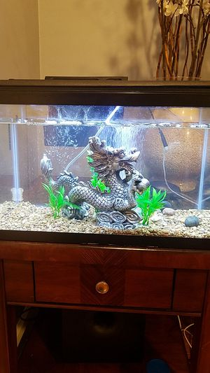 10 gallons beautiful fish tank with hard top hood with LED light ,complete set up ready for you to take home for Sale in Long Beach, CA