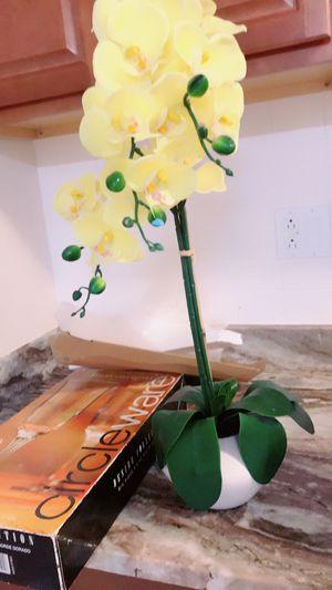 Flowers pot for Sale in Woodbridge, VA