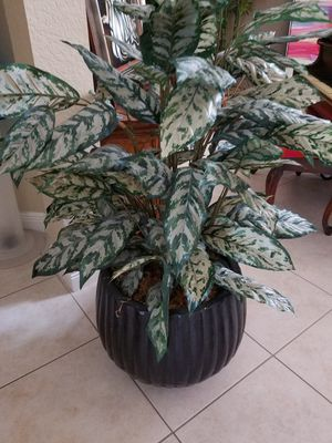 Faux plants for Sale in Boca Raton, FL