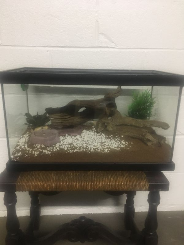 Reptile cage with accessories 10-15 gal