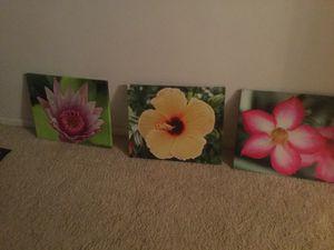 Photos on canvas for Sale in Brockton, MA