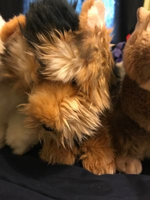 Webkinz Signature Short Haired Yorkie (No Tags) Best and Final Price Reduction for Sale in Cleveland, OH