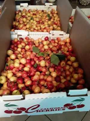 Rainier Cherries Recién Cortada 18 lbs for Sale in Stockton, CA