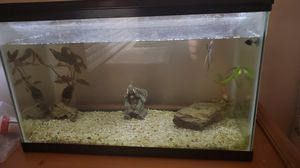 10 gallons fish tank for Sale in San Jacinto, CA
