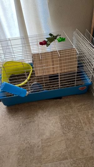 Guinea pig cage 100 with guinea pigs included for Sale in Beaverton, OR