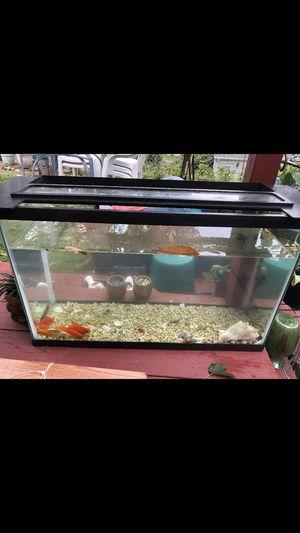 Fish Tank for Sale in Johnston, RI